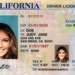 On The Nature of Vaccine Reticence: California drivers license with picture of young woman